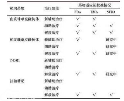表2 HER2阳性乳腺癌靶向治疗药物现状