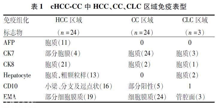 混合细胞型肝癌的临床病理分析
