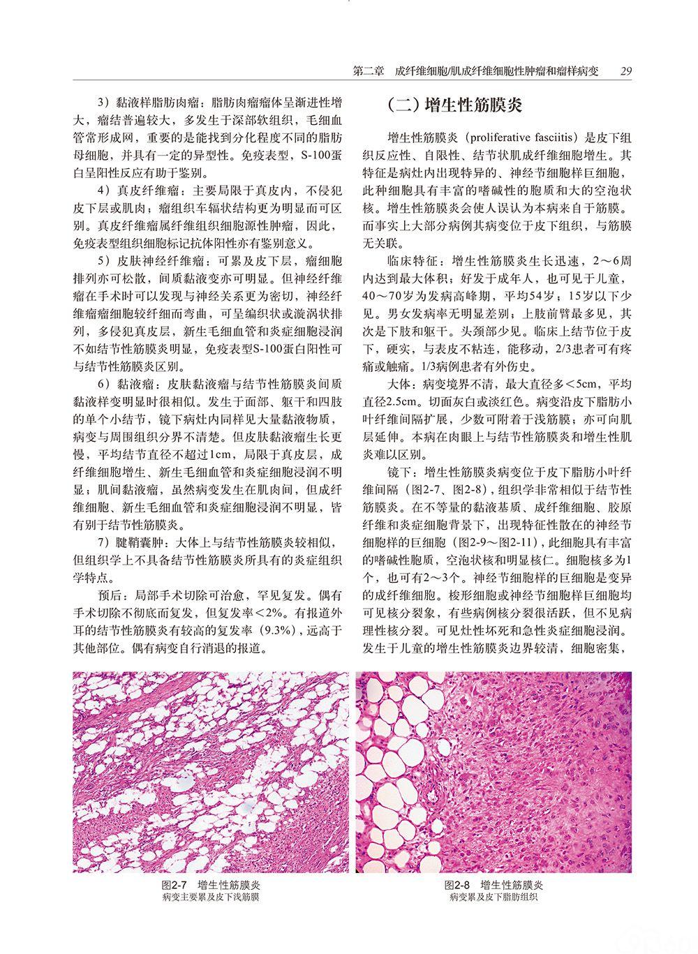 【好书推荐】软组织肿瘤病理学