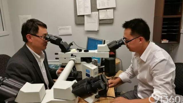 消化道非肿瘤病变病理学习体会/重视模拟IBD的疾病