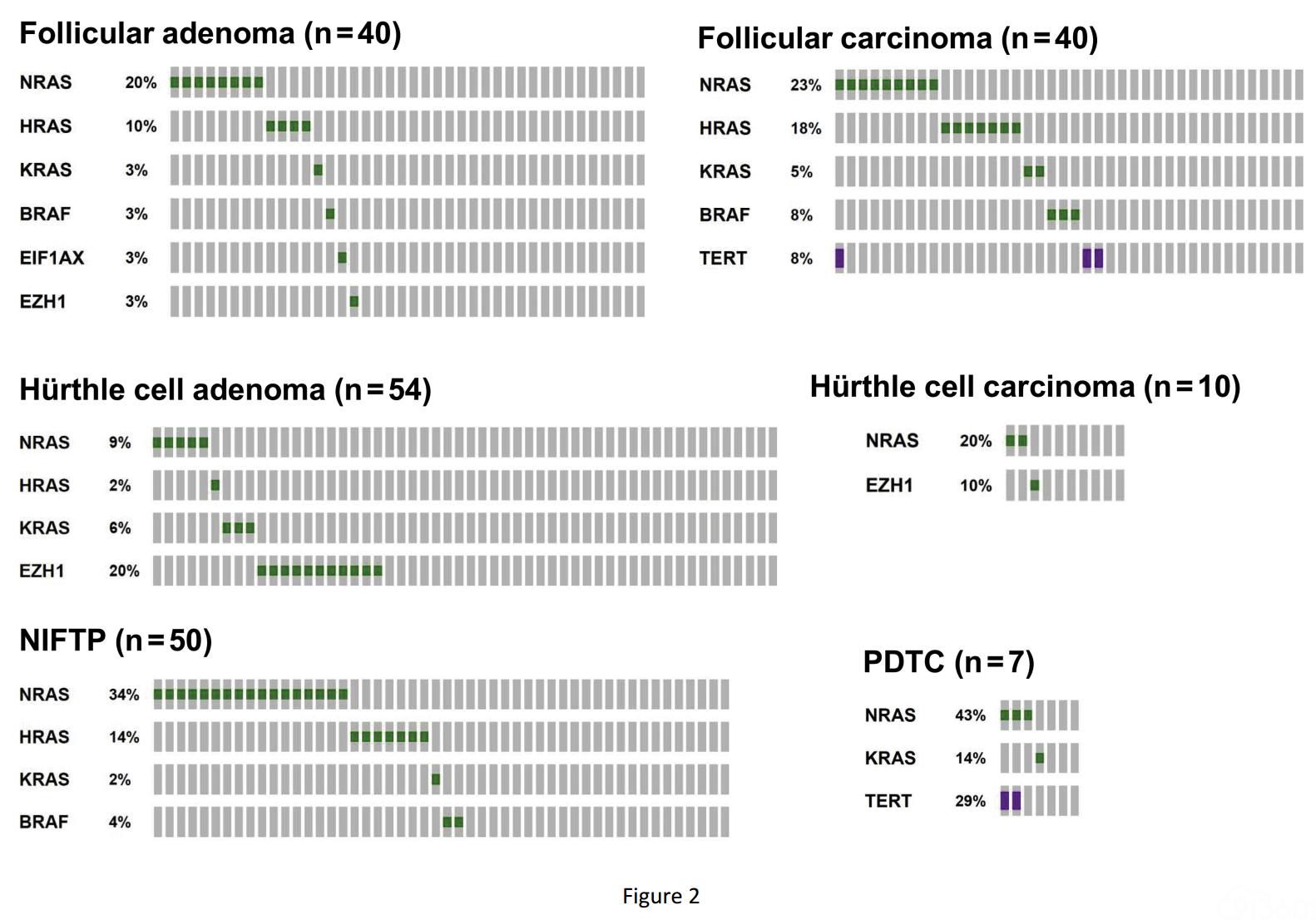 EZH1突变在滤泡性甲状腺肿瘤诊断中的临床应用(主要内容翻译)