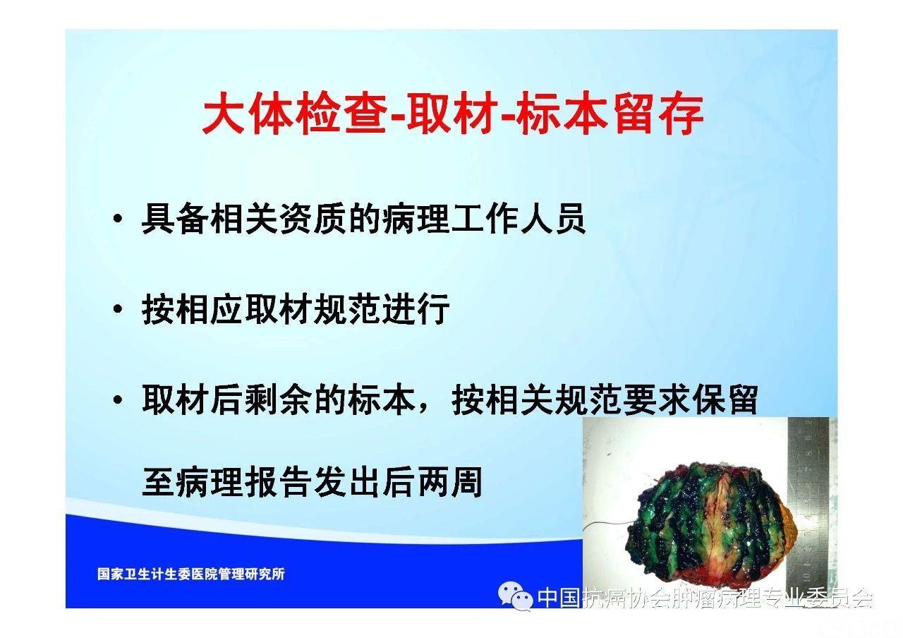 肿瘤病理规范化诊断标准 第1部分:总则
