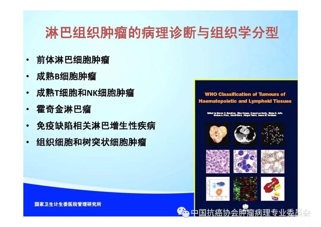 肿瘤病理规范化诊断标准 第2部分:淋巴组织肿瘤病理诊断标准