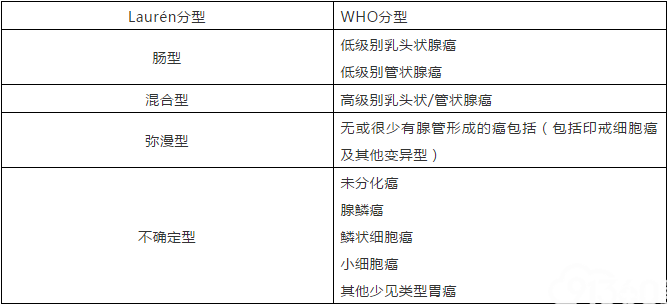 表1 Laurén分型及WHO分型对应表