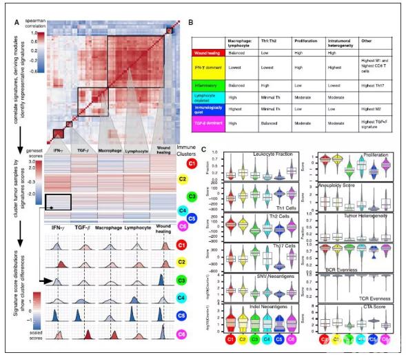 李忠武教授:结直肠癌分子分型及免疫治疗相关标志物