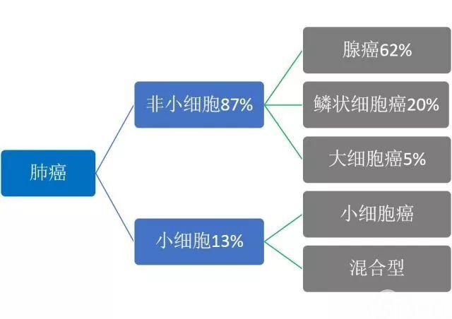肺癌病理报告解读(二)