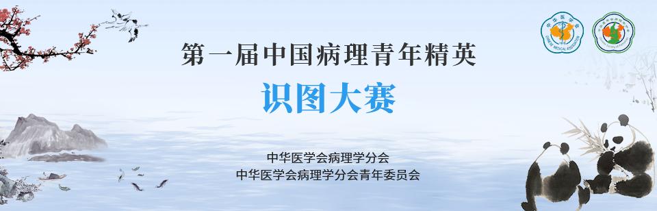 """""""第一届中国病理青年精英识图大赛""""报名通知"""