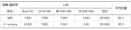 LEF1和β-catenin在DTF中的染色结果