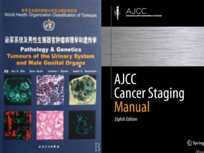 前列腺癌病理诊断新进展及病理科医师在MDT中的作用