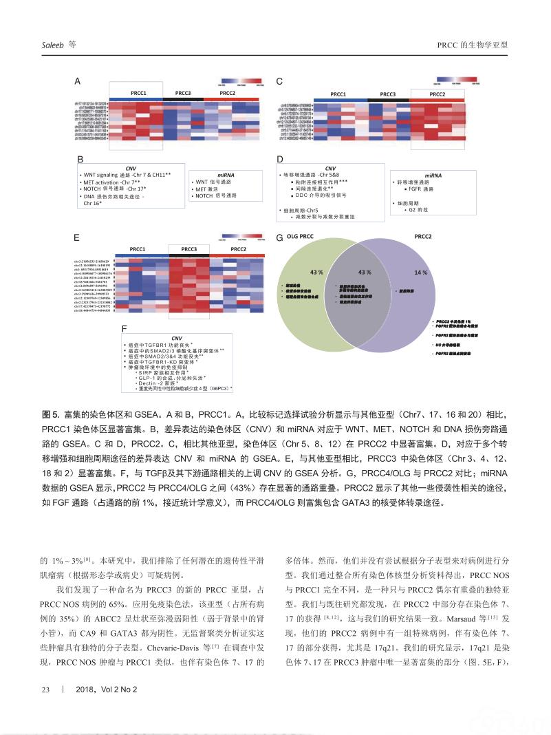 基于组织学、免疫组织化学和分子检测的乳头状肾细胞癌生物学分型及其临床意义