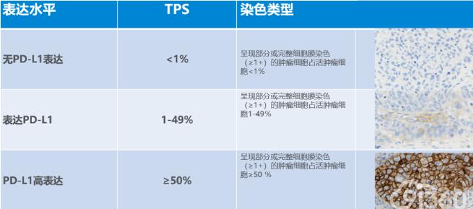 图1. TPS评分标准