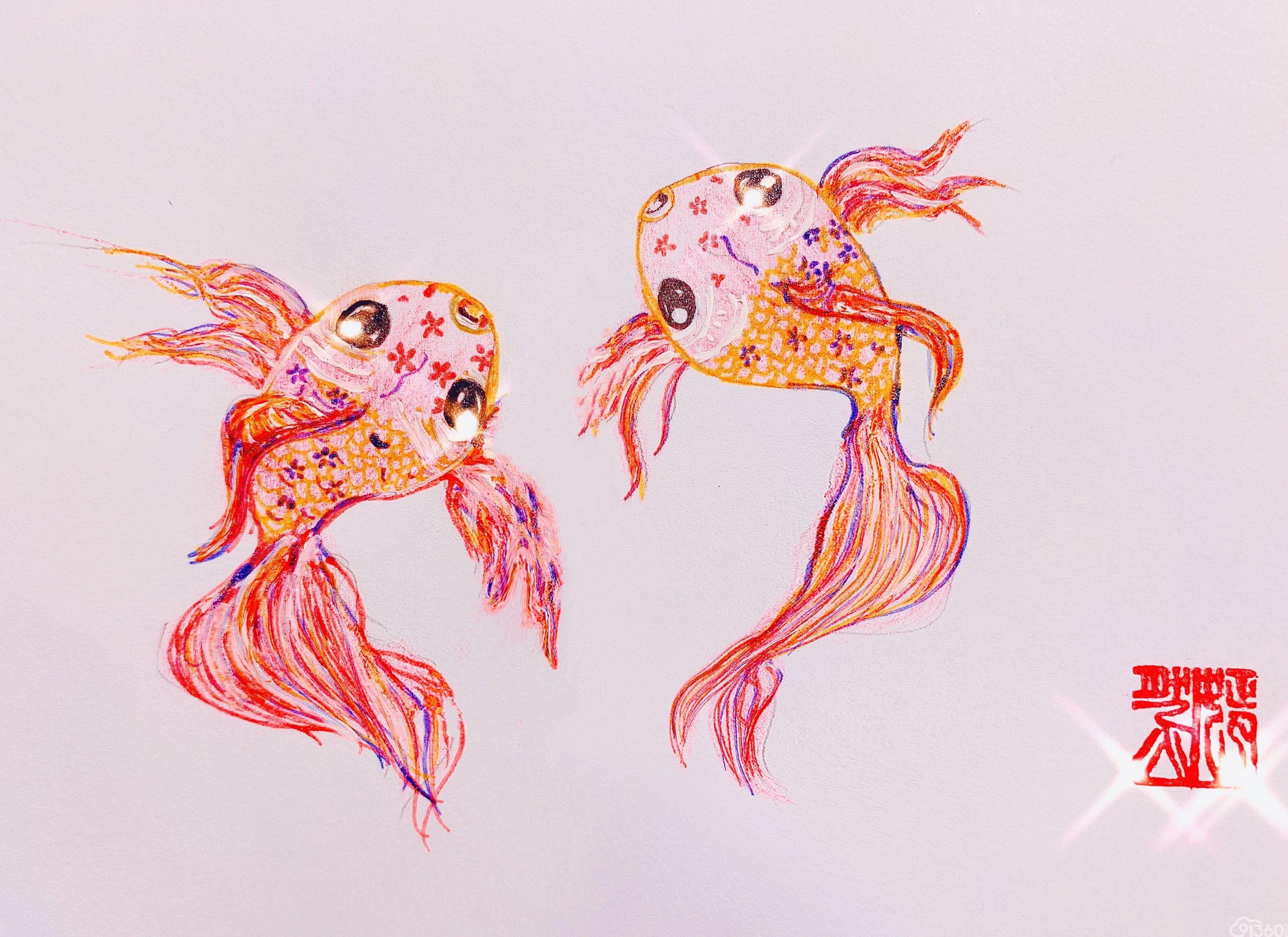 手绘病理世界——《锦鲤》