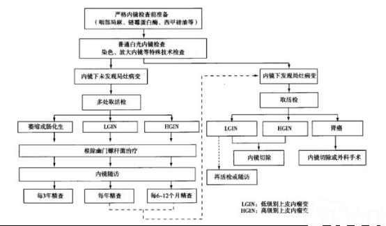 图3 胃癌精查和随访流程