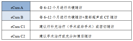 *需满足en bloc整块切除,HM0,VM0,ly(-),v(-)   表3 不同eCura评价结果的随访方法