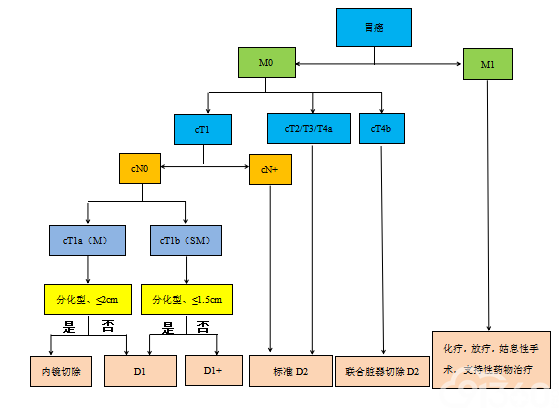图4 治疗流程