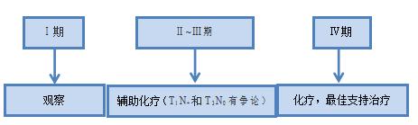 图5 术后治疗(根据术后pTNM分期)