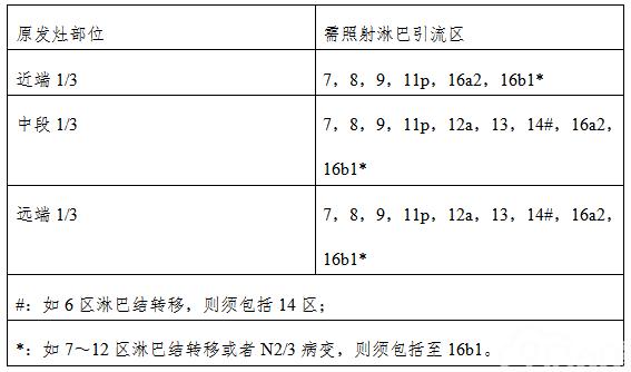 表5  高危选择性照射淋巴引流区
