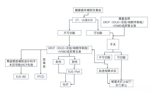 附件12:胰腺癌ERCP诊治作用流程图