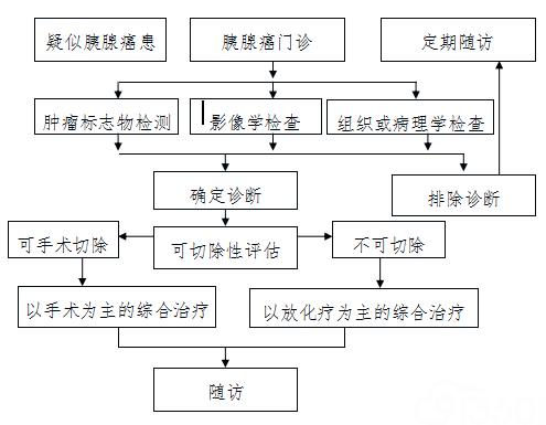附件13:胰腺癌诊疗流程