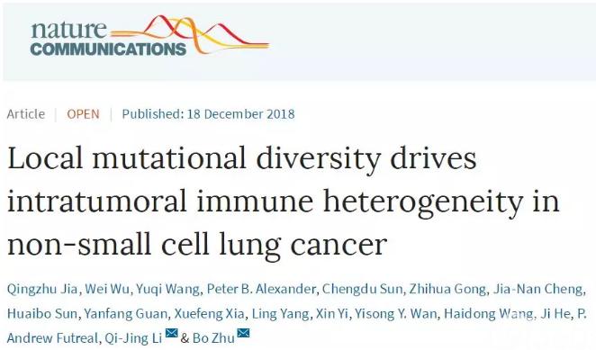 我国研究人员揭示肿瘤免疫微环境空间异质性