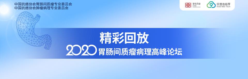 精彩回放:2020胃肠间质瘤病理高峰论坛