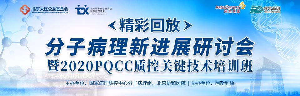 【精彩回放】分子病理新进展研讨会暨2020PQCC质控关键技术培训班