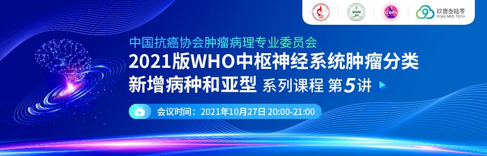 中国抗癌协会肿瘤病理专业委员会2021版WHO中枢神经系统肿瘤分类新增病种和亚型第五讲